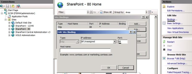 sccm application catalog website point critical
